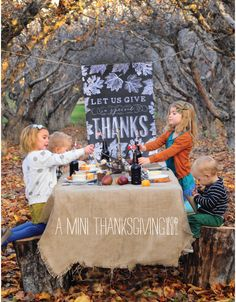 A Mini Thanksgiving: These photos are AMAZING!  And SUCH a cute idea!!  I love love love this idea and post!