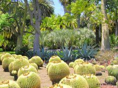 05/2005 Huntington gardens