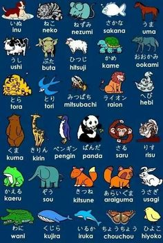 Japanese animals in hiragana Learn Japan, Go To Japan, Japanese Phrases, Japanese Words, Japanese Colors, Japanese Things, Japanese Kanji, Japanese Names, Study Japanese