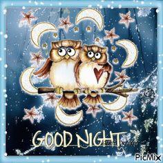 Owl Good Night Gif | morning | Good night gif, Night gif