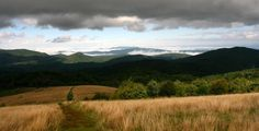Max Patch, NC on the Appalachian Trail - my favorite place in the world