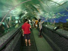 Sentosa Island - Water Park