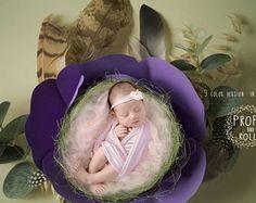 3 x Digital Backdrops, Newborn digital backdrop, newborn digital backdrop, paper flower prop, baby nest,photographie bébé, Neugeborene
