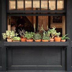 Filling a window box with terra cotta pots helps you replace and change plants easily. We love this one with succulents.