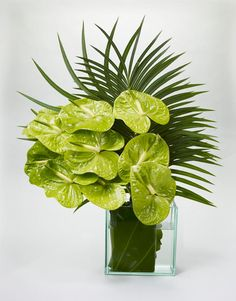 ❤️Green Anthurium -                                                  I love both as filler                                                    to exotic Hawaiian                                                 floral arrangements                                                and on its own.