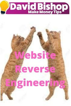 Reverse engineering is probably the greatest example of how to be a copycat to make more money online. First, let me design a website on reverse engineering.  Reverse engineering is taking apart a website to see how it works in order to duplicate it for a website of your own. This is not that complicated and I am surprised at why more Internet marketers do not do it. It involves doing in-depth research. Make More Money, Make Money Online, Website Promotion, Take Apart, Building A Website, Money Tips, Copycat, Helping Others, Internet Marketing