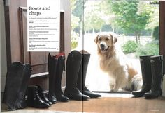 Hunter Field Mornington Riding Boots featured in Horse and Rider, UK September 2016.
