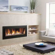 a gas fireplace in the living room  56-inch direct vent max 29000BTU  Regency Fireplace