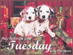 Image from http://www.lovethispic.com/uploaded_images/149248-Tuesday-Blessings.jpg.