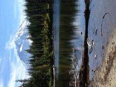 Mt Rainier from Surprise Lake 9/15/2012.
