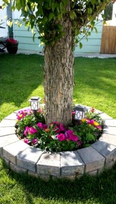 60 Cheap Landscaping Ideas for Front Yard You'll Fall in Love With - Garten - Cheap Landscaping Ideas For Front Yard, Landscaping Around Trees, Garden Yard Ideas, Outdoor Landscaping, Garden Projects, Backyard Ideas, Garden Beds, Backyard Patio, Front Yard Tree Ideas