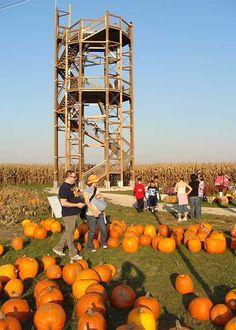 Richardson Adventure Farm, Corn Maze, Pumpkin Patch, Orb Rides, Christmas Trees & Picnics in Spring Grove, Illinois