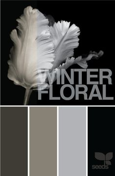 Palette inspired by winter flowers