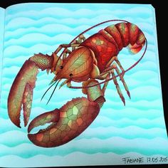 This is my last painting by Millie Marotta book #colouring #milliemarotta #lobster