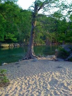 Pedernales River near Fredericksburg, TX. Great place to camp