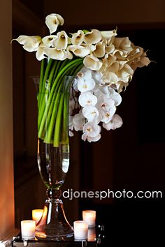orchids and calla lillies
