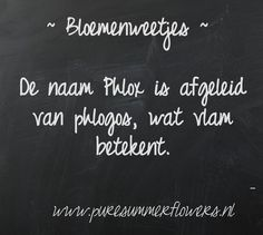 Bloemenweetjes. Phlox.     This quote courtesy of @Pinstamatic (http://pinstamatic.com)