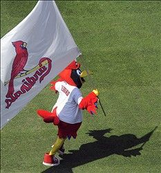 Cards sweep the Cubs!!!  7-22-12