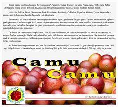 Cozinha Simples da Deia: DICA FUNCIONAL: Camu-Camu