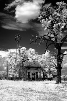 Abandoned -( so lovingly haunted > reminds me of my Grandparents old house...the one my mother grew up in.) ~ via Kecia Frazee Deveney