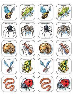 Imagenes animales para recortar-Imagenes y dibujos para imprimir