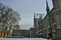 The cathedral of Konstanz #konstanz #germany #cathedral #tourism #travels #winter