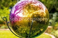 SEBPHOTOGRAPHY sebphoto.weebly.com
