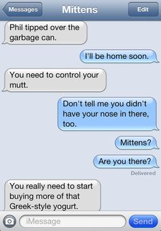 Mittens the texting cat