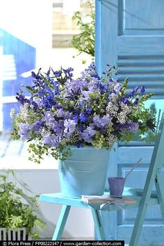 larkspur, lady's mantle, sweet pea, monkshood, carduncellus, baby's-breath and snapdragon