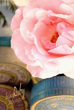 Being Ruby: French Inspired...a French rose in full bloom