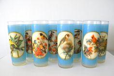 Vintage Bird Drinking Glasses Set of 8 Blue by MissBettysAttic