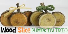 If you're looking for quick DIY Fall decorations these cute little rustic pumpkins are perfect! Make a set in minutes from wood slices. A wonderful gift! Cd Crafts, Mason Jar Crafts, Burlap Crafts, Burlap Christmas Tree, Christmas Crafts, Wooden Snowmen, Mason Jar Lighting, Wood Slices, Fall Decorations