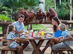 Bali Zoo - Breakfast with Orangutan
