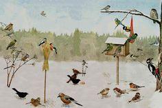 Vanligaste fåglarna vid fågelbordet