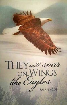 They will soar on wings like eagles. (Isaiah 40:31)