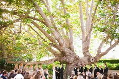 Along with having amazing golden sunlight, California is filled with some of the most beautiful wedding locations ever. This was my first time shooting at The Adamson House and it quickly became one of my favorite venues. The Adamson House is a Colonial Revival home filled with Spanish and Moorish…