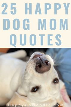 Get happy with these 25 feel-good dog mom quotes that we curated specifically with dog moms in mind. Each dog quote was chosen for its relevancy to living the dog mom lifestyle—from meaningful quotes about dog love to funny dog quotes. Give yourself a dog-loving smile and share one too! #dogmomquotes #dogquotes #cutedogquotes #meaningfuldogquotes
