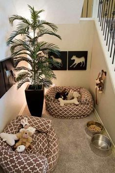 Great pet idea in a typically wasted space.