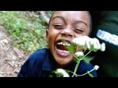 Nature is everywhere -- we just need to learn to see it | Emma Marris - YouTube