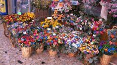 """Cestini di fiori? No, di confetti! I famosi confetti di Sulmona, in Abruzzo! Scopri curiosità http://www.italianomadrelingua.com/italia-abruzzo.html  Baskets of flowers? No, of confetti! The famous """"confetti of Sulmona"""", Abruzzo Discover lots of italian curiosity on our site www.italianomadrelingua.com/en/italy-of-regions-abruzzo.html"""