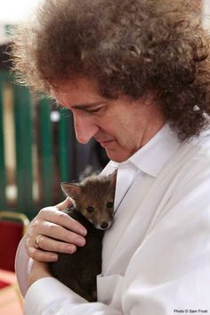 Brian May with a baby fox. Queen Brian May, I Am A Queen, Heavy Metal, Brian Rogers, Funny People Pictures, Funny Pics, Funny Memes, Roger Taylor, Ben Hardy