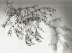 leafy sea dragon tattoo - Google Search