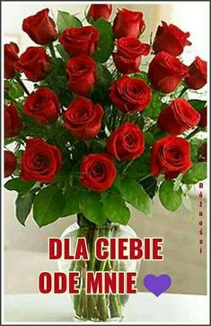 Good Morning Funny, Perfume, Happy Birthday, Valentines, Pictures, Motto, Happy Brithday, Fotografia, 70 Birthday
