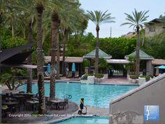 The Beautiful Paradise Pool At Arizona Bitmore In Phoenix