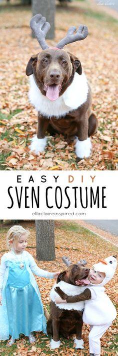 Easy DIY Sven Costume for a Dog Easy Diy Crafts easy diy dog costumes Run Disney Costumes, Dog Halloween Costumes, Pet Costumes, Halloween Diy, Disney Dog Costume, Olaf Costume, Running Costumes, Fairy Costumes, Halloween Season