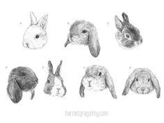 PRE ORDER temporary tattoos - set of 7 fake bunny tatts - bunny tattoo - rabbit - bunnies - rabbits - SEVEN