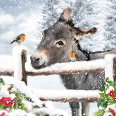 Donkey & Robin Art Print Christmas Wall Decor Donkey Painting Cute Animal Art Print Gifts British Birds Wall Art Country Home Decor#Special#Days