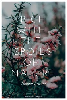 15 Beautiful Quotes about Nature and Wilderness to inspire you 15 Beautiful Quotes about Nature and Wilderness to inspire you Malviya sisters Save Ima… – Quotation Mark Good Morning Nature Quotes, Natural Beauty Quotes, Beauty In Nature Quotes, Quotes About Nature, Wilderness Quotes, Nature Photography Quotes, Forest Quotes, Rose Quotes, Deep Quotes