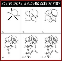 DARYL HOBSON ARTWORK: How To Draw A Flower Step By Step Drawing Guide