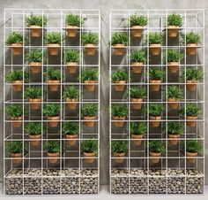 Jardin Vertical - Idea
